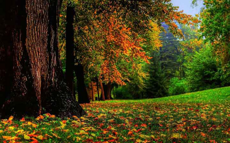 بهترین زمان سفر به آنتالیا در پاییز برای خرید