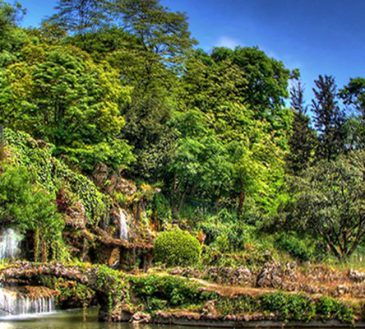 پارک جنگلی آتاتورک آنکارا