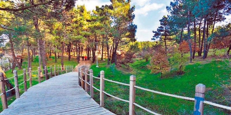 نمای داخلی پارک جنگلی آنکارا