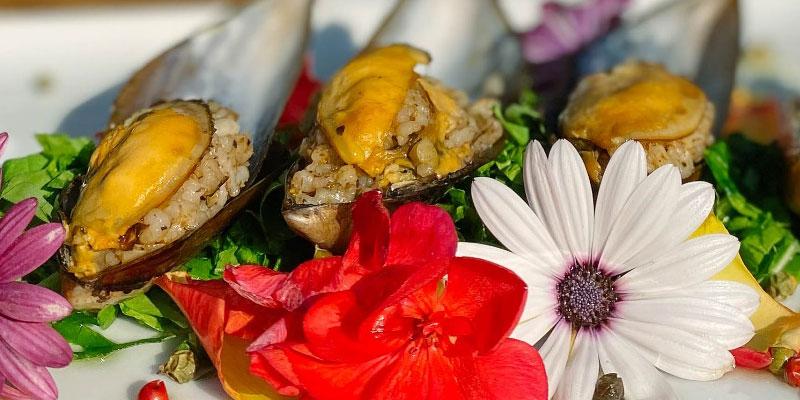میدیه دولما، غذای دریایی محبوب در بهترین رستورانهای استانبول