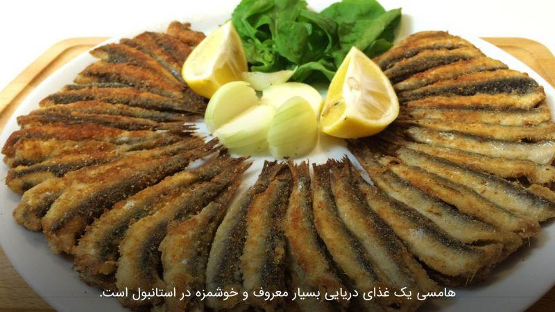 ماهی هامسی استانبول